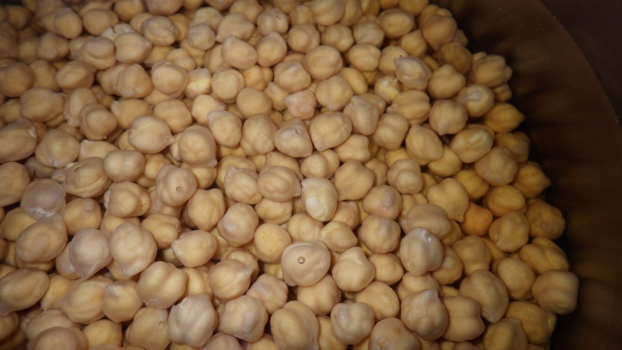 Image result for garbanzo beans vs chickpeas