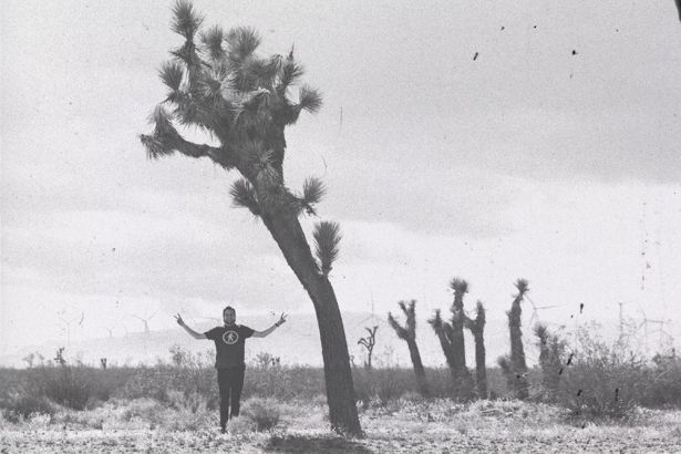 Joshua Tree National Park black and white photo
