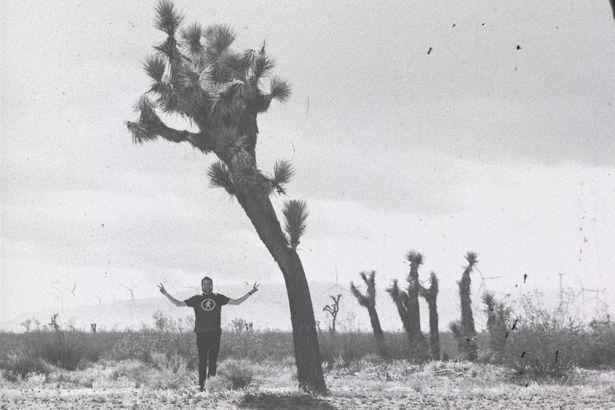 Joshua Tree National Park black and white photo