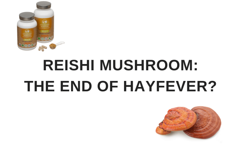 reishi for hayfever