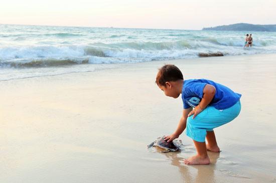 ลากูน่าภูเก็ตเชิญร่วมกิจกรรมอนุรักษ์พันธุ์เต่าทะเล วันอาทิตย์ที่ 3 เมษายนนี้