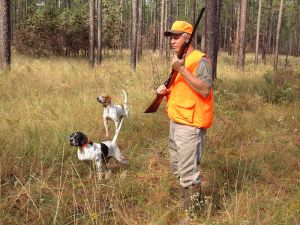 licenziamento illegittimo caccia