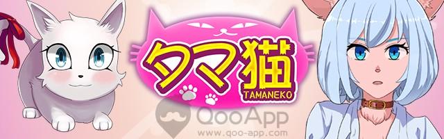 タマ猫01