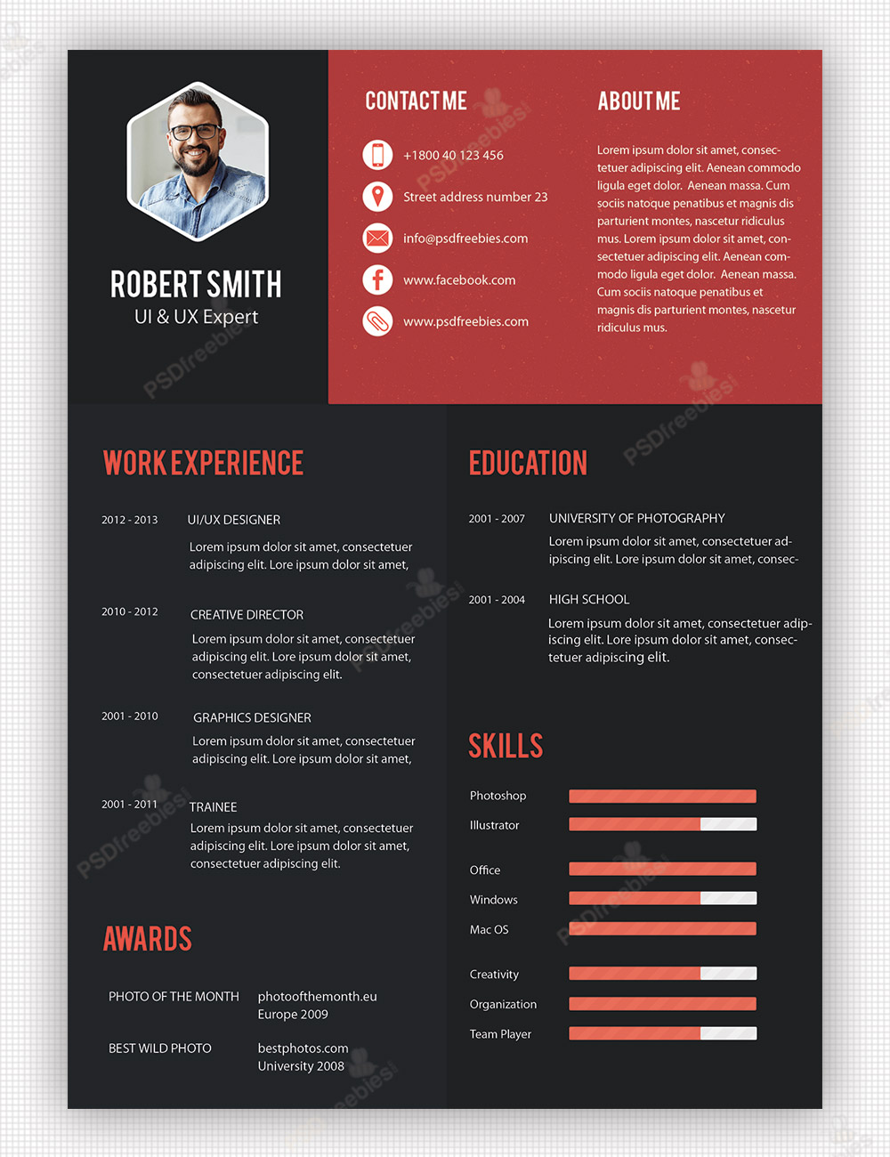 Creative Business Resume Templates Professional