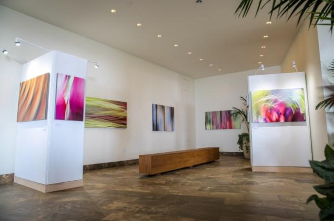 Shane Robinson Fine Art at Andaz Maui at Wailea – Shane Robinson