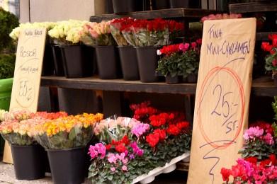 Flower shop in Lund, Sweden