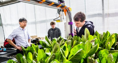 From left, Cheol-Hong Min, School of Engineering faculty, and Peter Farley and Andrew Ryan, both Engineering majors, work on the Farmbot, attached to an arm over a bed of lettuce in the Biology Department Greenhouse in Owens Science Hall, taken on March 16, 2017. The Farmbot is an automated farming robotic tool guided by GPS. The project is a collaboration of several St. Thomas academic departments, including the School of Engineering, Chemistry and Biology.