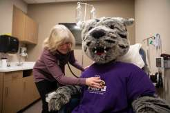 Tommie gets a checkup from Dr. Marilee Votel-Kvaal during the grand opening of the new Center for Well-Being. Mark Brown/University of St. Thomas