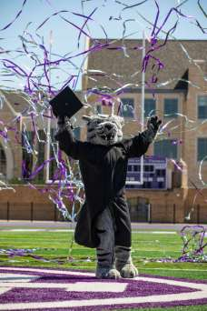 Photos of Tommie the Mascot wearing a commencement cap and gown and celebrating with confetti streamers in O'Shaughnessy Stadium on Palmer Field in St. Paul on May 20, 2020.