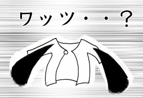 見覚えのない謎の服を洗濯物の中から発見