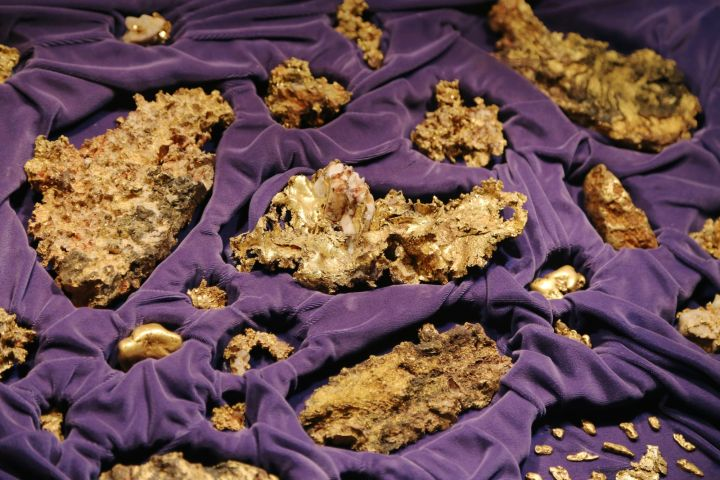 The Placer County gold collection, including quartz gold, placer nuggets, and crystalline formations.