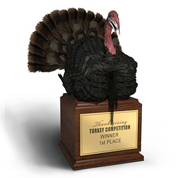 Thanksgiving trophy
