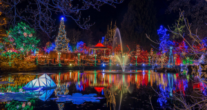 Christmas, McNellis Partners, Palo Alto, Bay Area