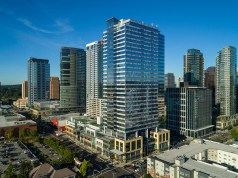 Seattle, Broderick Group, Tenants in the Market, Bellevue CBD, Eastside, Puget Sound region, commercial real estate market