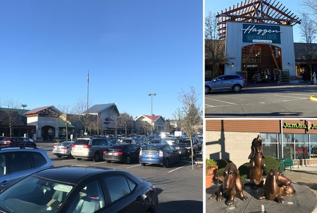 Newmark Realty Capital, Seattle, Downtown Woodinville Shopping Center, Woodinville, Target, Haggen Grocer, AMC Theater, PetSmart, Barnes & Noble, Cost Plus World Market, Ross Dress for Less, Famous Footwear, Starbucks, Chipotle.