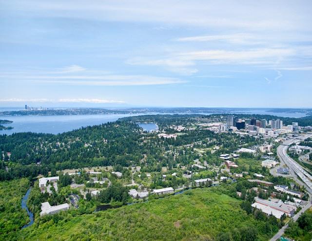 JLL, Bellevue, Seattle, Bellefield Office Park, Lionstone Investments, Talon Private Capital