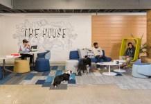 The House, The House Fund, U.C. Berkeley, Berkeley, Fennie + Mehl, Principal Builders, Haworth