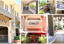 Lyndon Plaza Los Gatos Cushman & Wakefield Sridhar Equities
