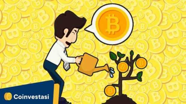 Staking Coin, Cara Mendapat Passive Income dari Aset Crypto
