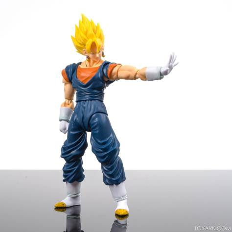 Image result for Vegetto SHF