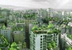 حدائق بيروت المعلقة.. آلاف الأشجار فوق أسطح المباني