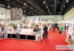 كرنفال العلامات التجارية الكبرى 2013