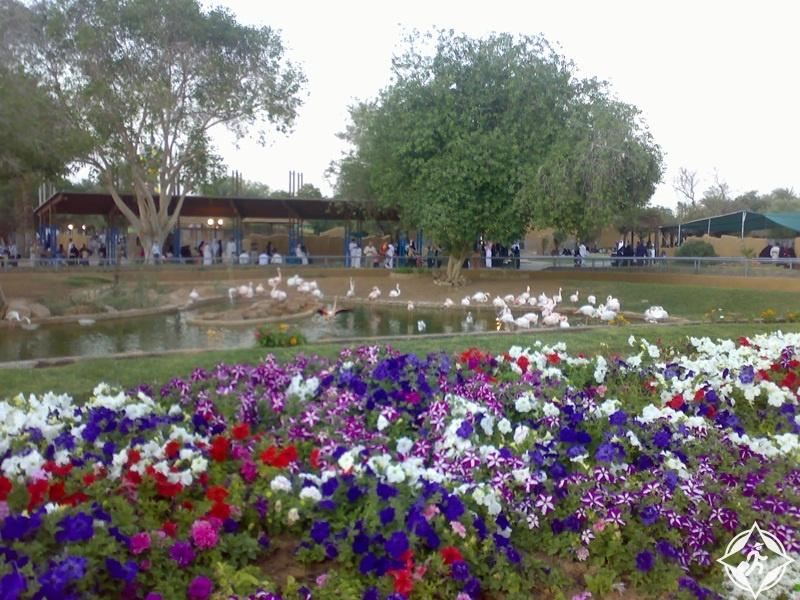 حديقة الحيوان بالرياض 9