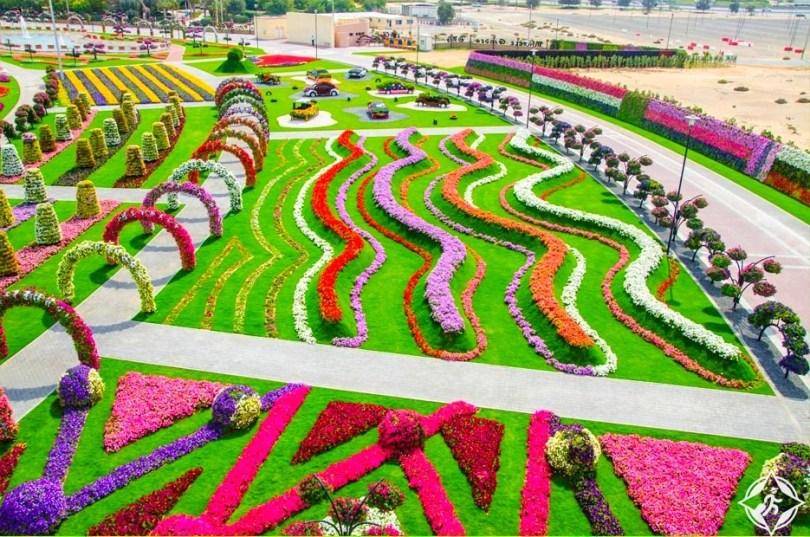 حديقة الزهور في دبي 15