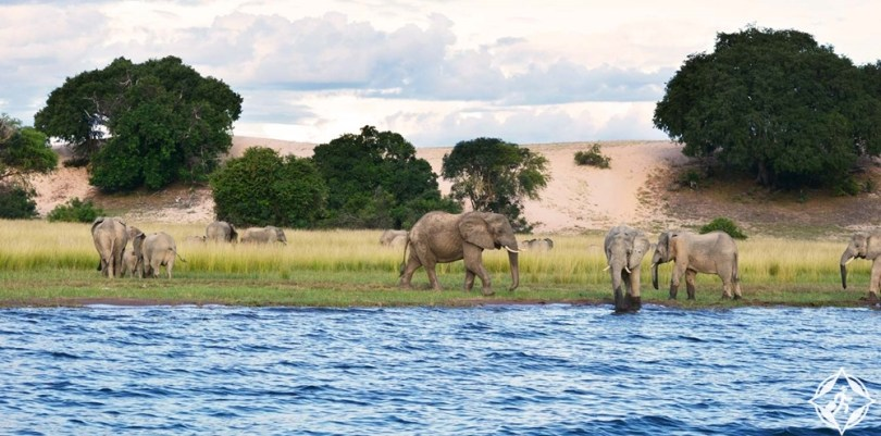 أفريقيا - بحيرة تنجانيقا