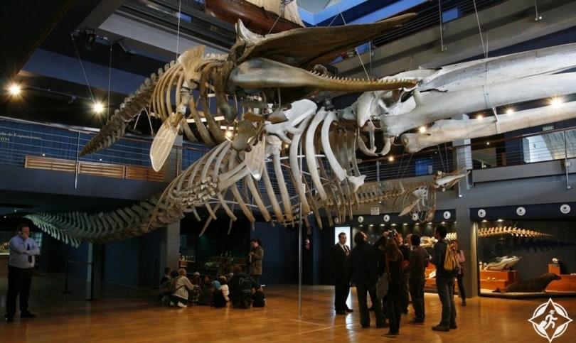 سانتاندر - المتحف البحري في سانتاندر