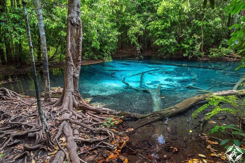 كرابي - حديقة الغابة الطبيعية ثونج تيو