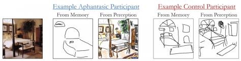 Aphantasia example