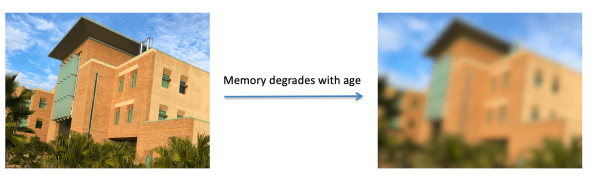 Memory degrades with age