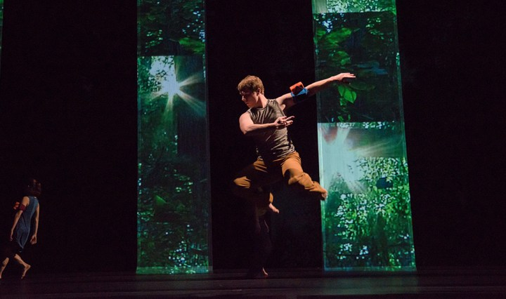 Baltimore Dance Project - LightForest