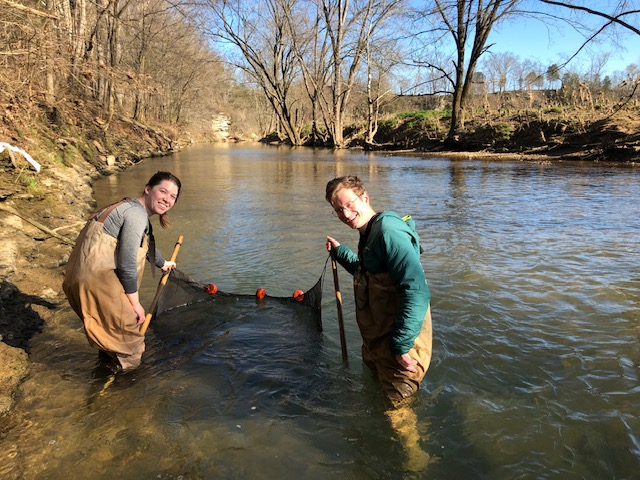 Two grad students seine fishing for darters to study.
