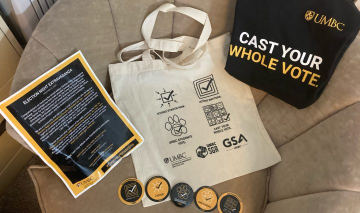 """T-shirt, canvas bag, flyer and stickers with large text reading, """"Cast Your Whole Vote"""""""