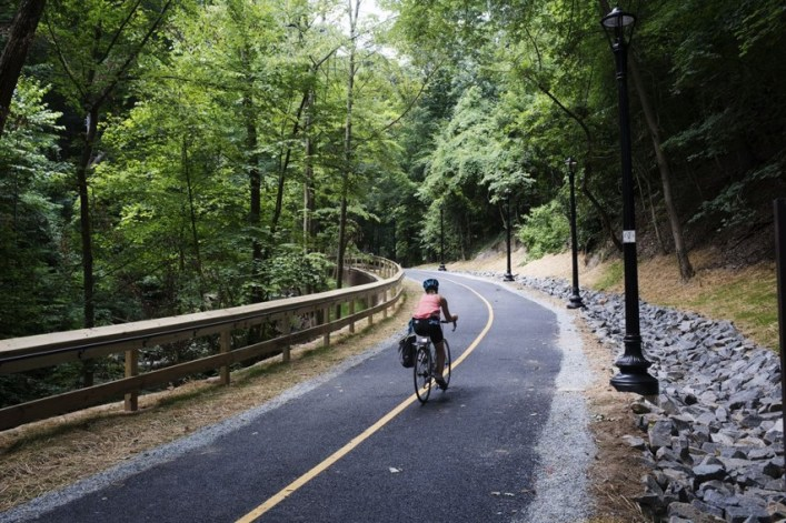 Cyclist heading down a bike path with forest on either side.