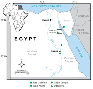 Map of Egyptian excavation sites.