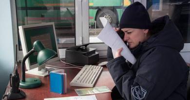 Polițiștii de Frontieră au descoperit două acte false și un camion indisponibilizat