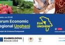 UNDP și Primăria Ungheni organizează Forumul Economic Regional