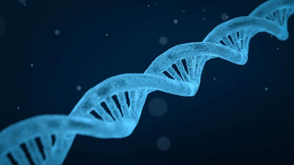 A close-up, simplified digital rendering of a DNA molecule.