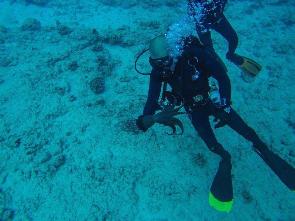 Former Marine Nicholas Foster scuba diving