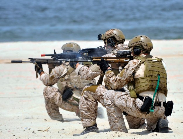 Navy SEALs train at Virginia Beach, Va. in 2012. U.S. Navy Photo
