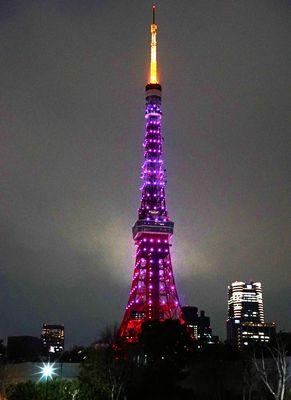 コブクロ、東京タワーと桜コラボ!
