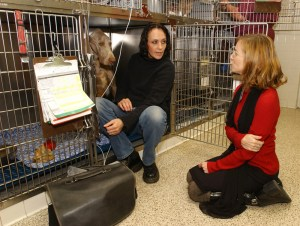 Elizabeth Strand, right, counsels a client whose dog is receiving intensive care.