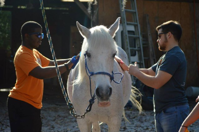 ASB 2015- Animal Outreach