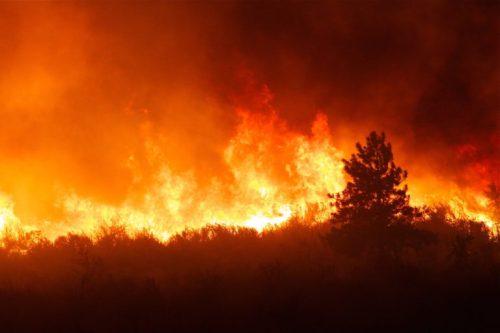 mayer_smoky-mtn-fires_feb-10-768x512