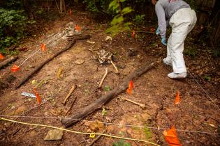 Details of surface recovery and mapping at the Anthropology Research Facility (also known as the Body Farm) on June 05, 2019. Photo by Steven Bridges/University of Tennessee.
