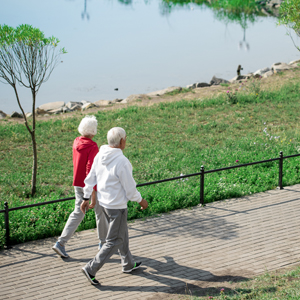 Back view wide angle portrait of active senior couple walking in park along lake, copy space