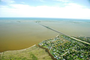"""Aerial view of HAB """"brown tide""""   Photo courtesy of PNAS"""